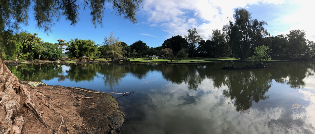 Pond in the Bay of Hilo