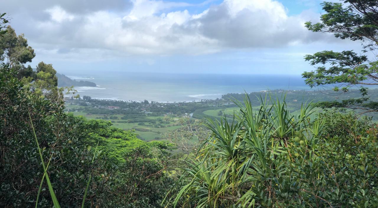View off Okolehao Trail down to Hanalei Bay