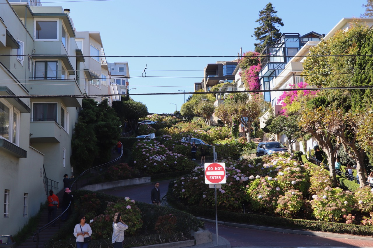 Looking up Lombard Street