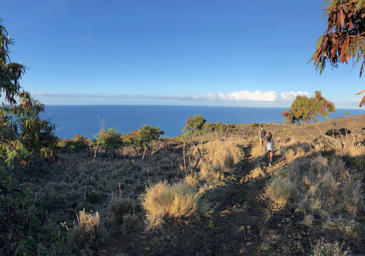 Captain Cook Trail is a steep walk down to the sea