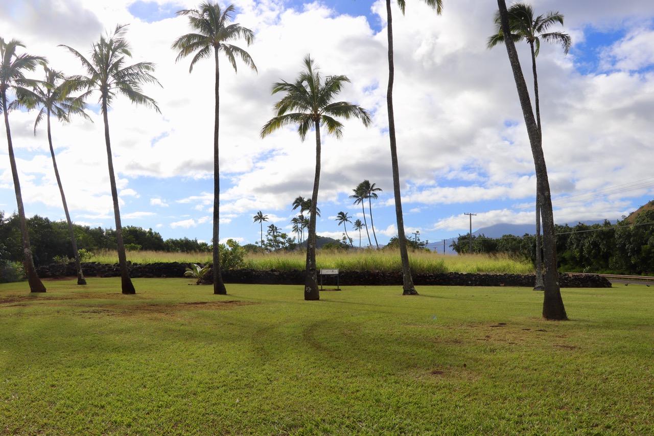 Poliahu Heiau, Stone wall enclosure, remnant of Kauai's spiritual and cultural history.
