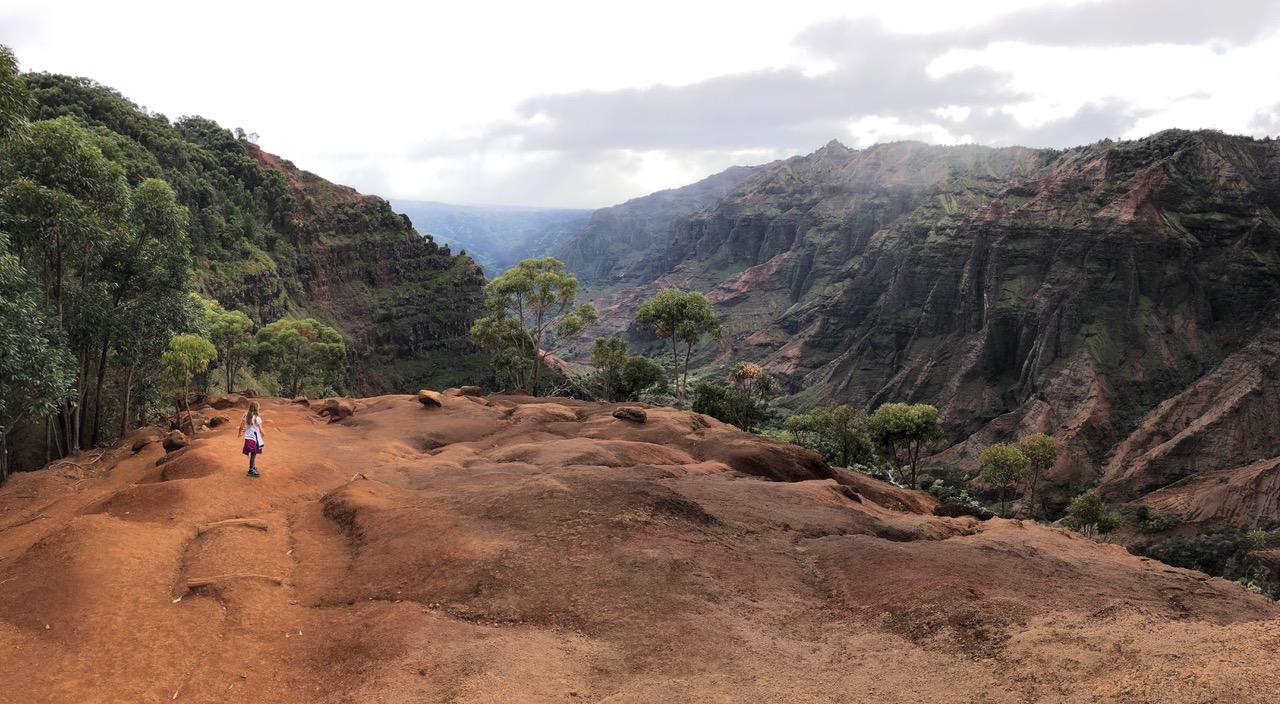 Looking out of  Waimea canyon