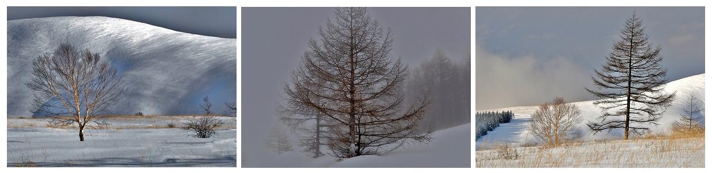 崎田篤恭 「高原の冬景色」(長野県)※3枚組