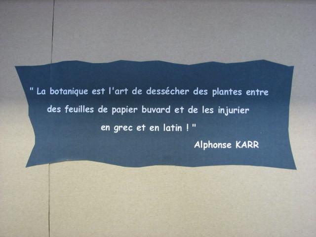 Citation d'Alphonse Karr