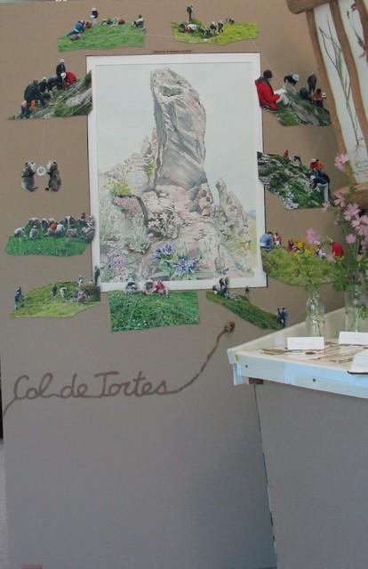 Aquarelle de Dominique Rossier et photos du groupe flore des Amis du parc national des Pyrénées (Programme Vigie flore )