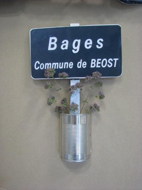 Lo camin vielh, promenade botanique de Béost à Bagès