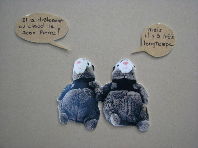 Commentaires des marmottes