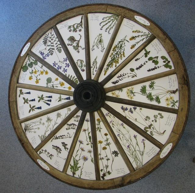 L'herbier des quatre saisons en Ossau
