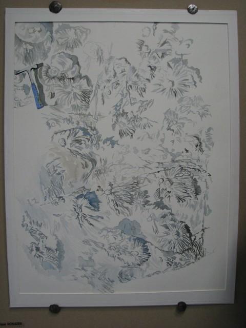 Illustrations d'après nature (Dominique Rossier)
