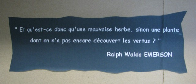 Citation de Ralph Waldo Emerson