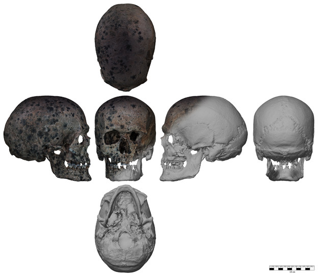 Gescannter prähistorischer Schädel (BLDAM)