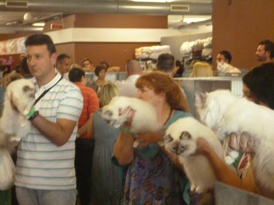 Expo Jesolo 2012