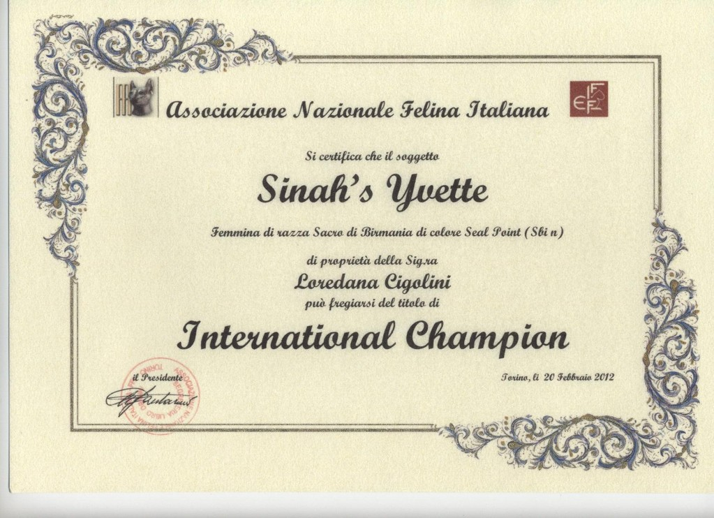 Titolo International Champion