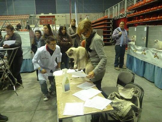 Expo Genova 2011