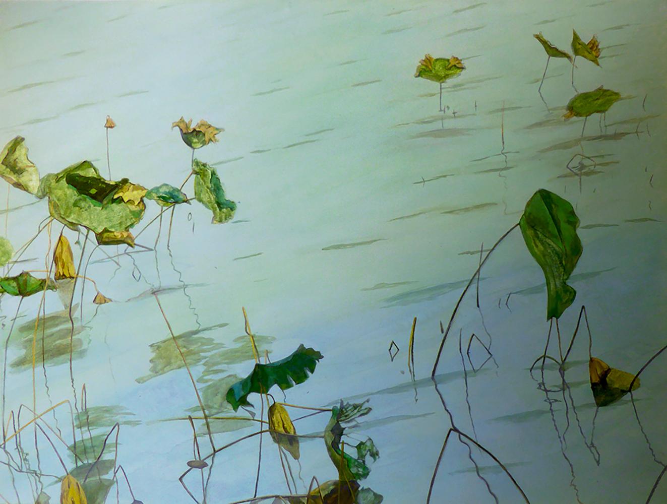 Lotus 02, Oil on Canvas, / 荷,布面油画    92cm x 92cm, 2014