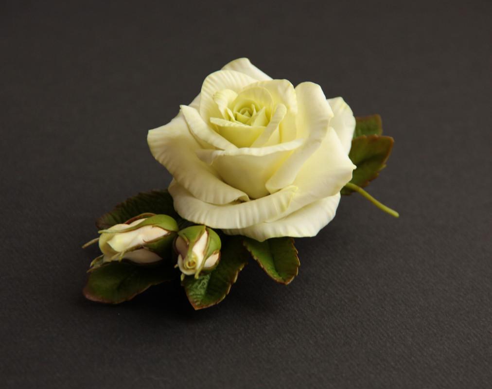 роза цвета слоновой кости