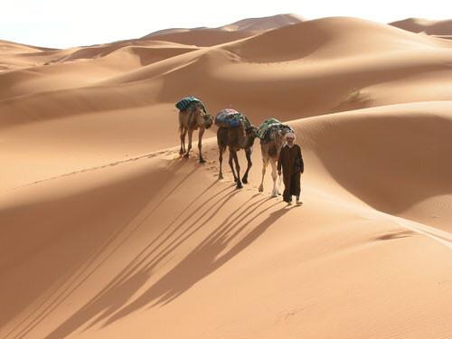 Wüstentrekking in Marokko