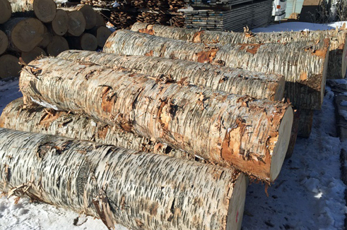 原木は北海道や長野の原産