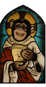 glas in lood heilig aapje / stained glass holy monkey