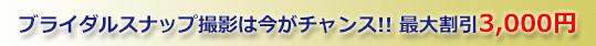 ブライダルスナップ撮影は今がチャンス!!最大割引3,000円
