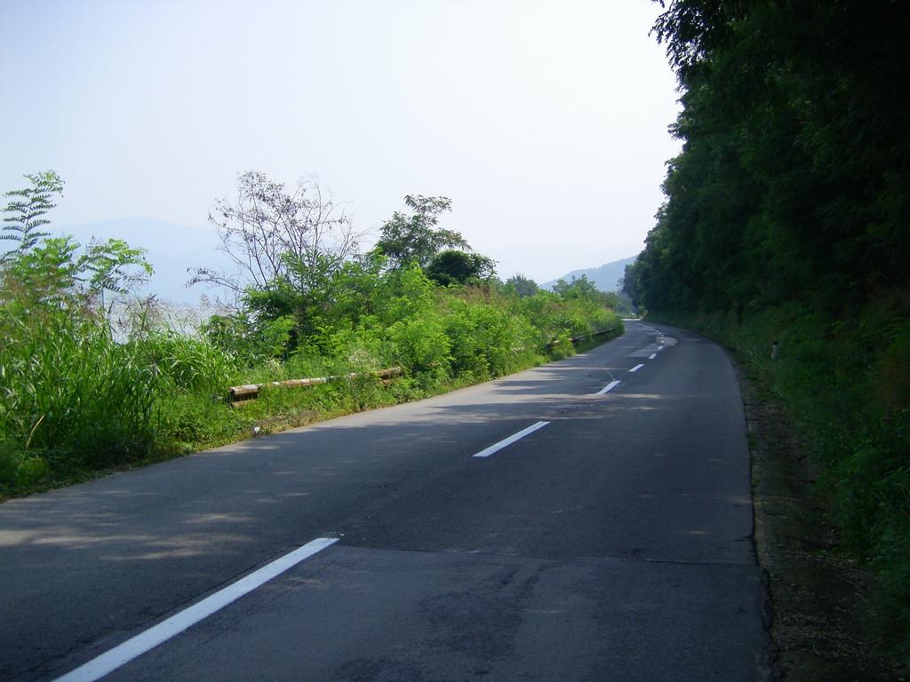 Bon point : la route est à l'ombre !