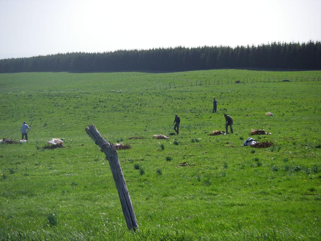 Les arracheurs de racines de gentiane.