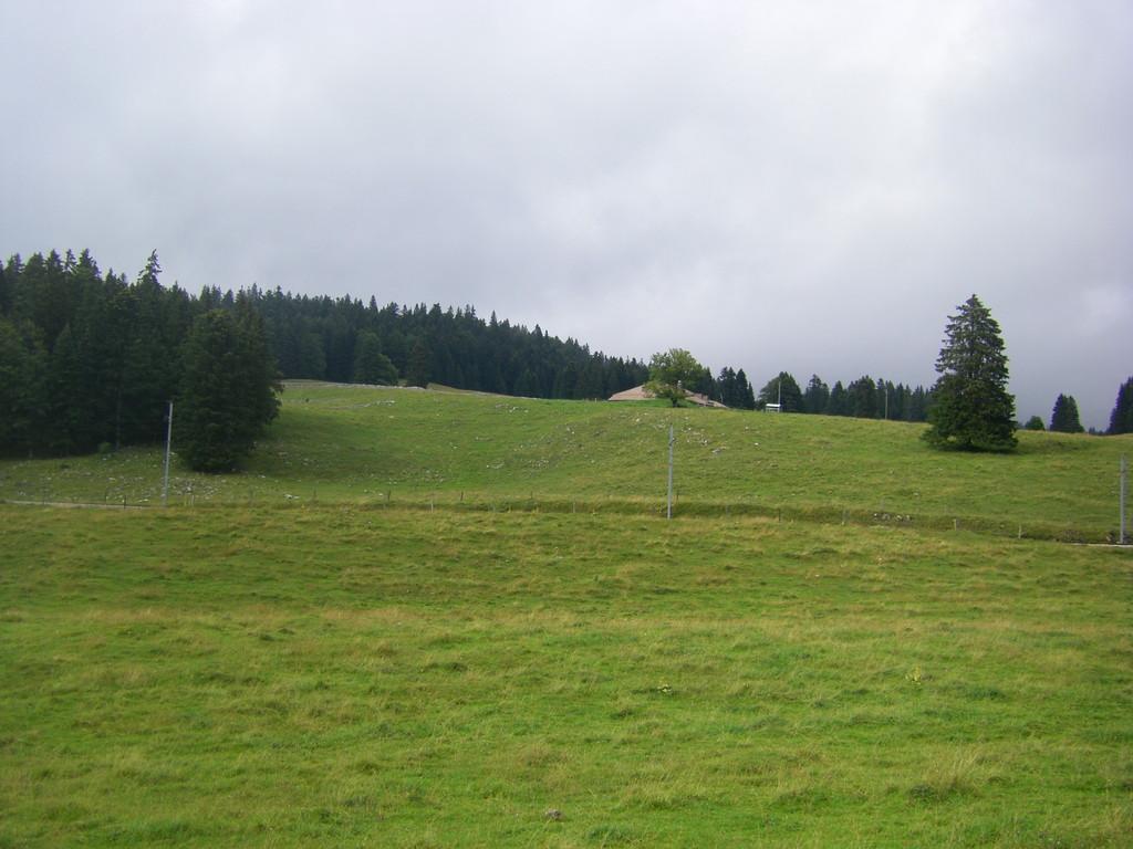 Pas de doute, c'est bien le massif du Jura !