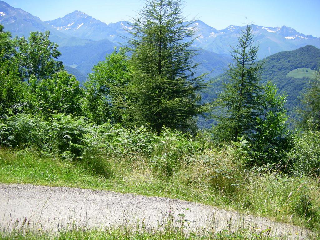 Bientôt le sommet, la route n'est plus goudronnée.