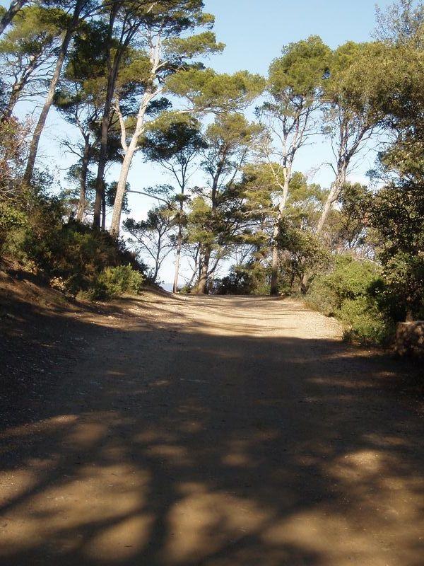 Un des nombreux chemins de l'île.