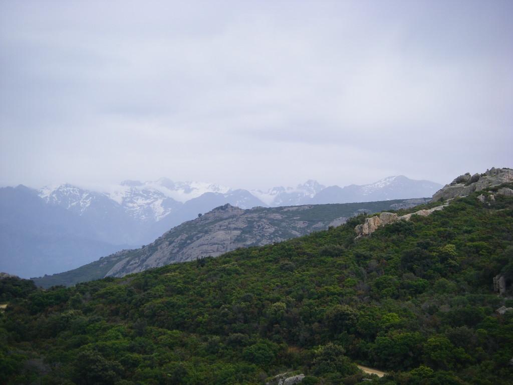 Les montagnes corses depuis ND de la Serra.
