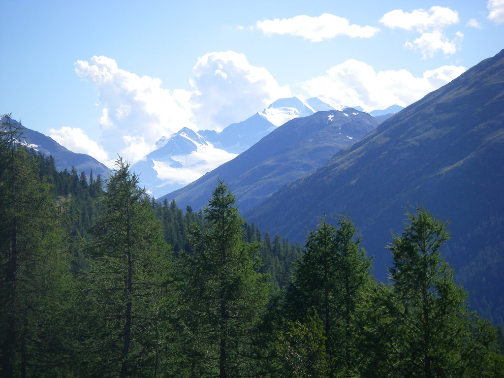 Piz Bernina au loin.