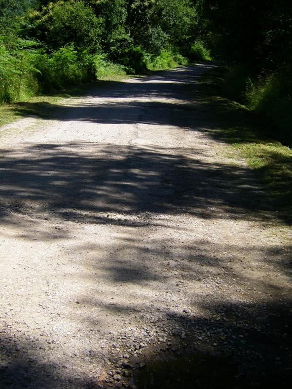 La descente vers le col de Portech.