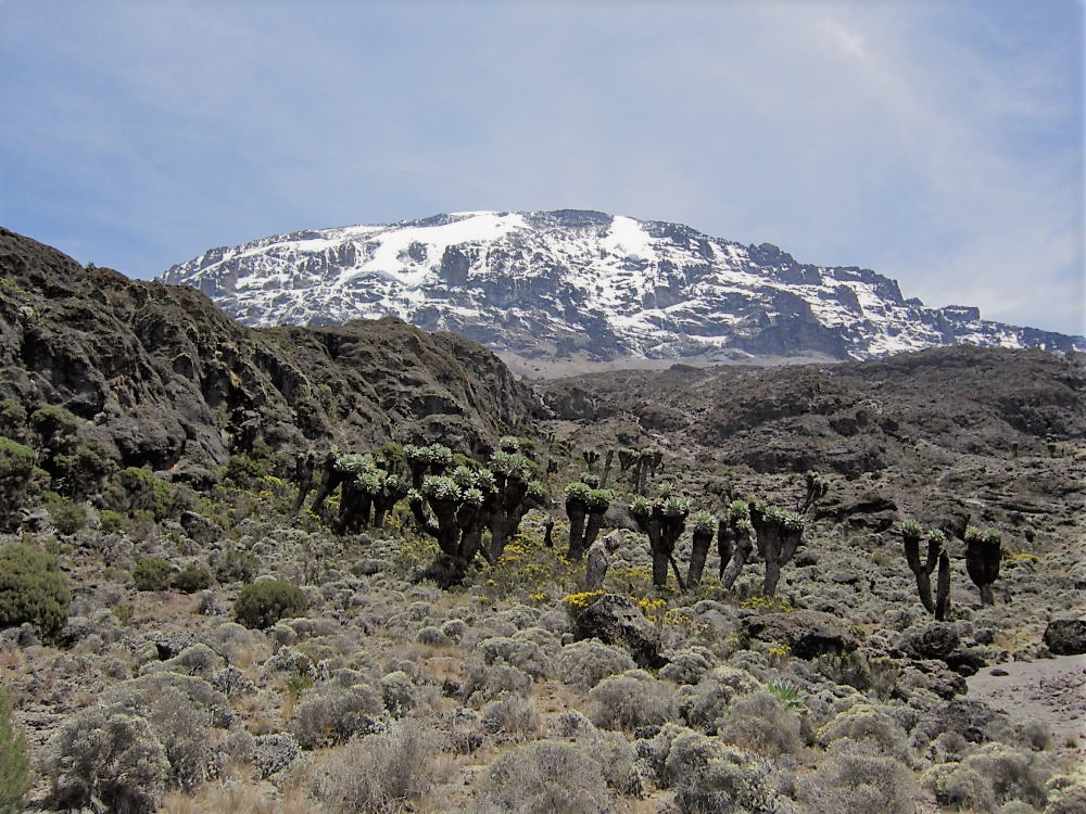 Barranco Camp to Karanga Camp