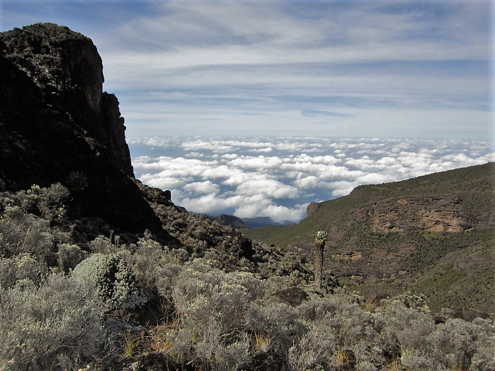 Private Tours Mount Kilimanjaro
