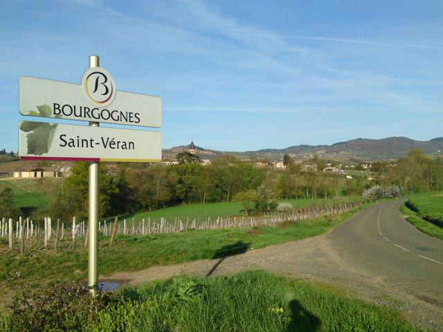 Signalisation des appellations viticoles de Bourgogne (21-71-89)