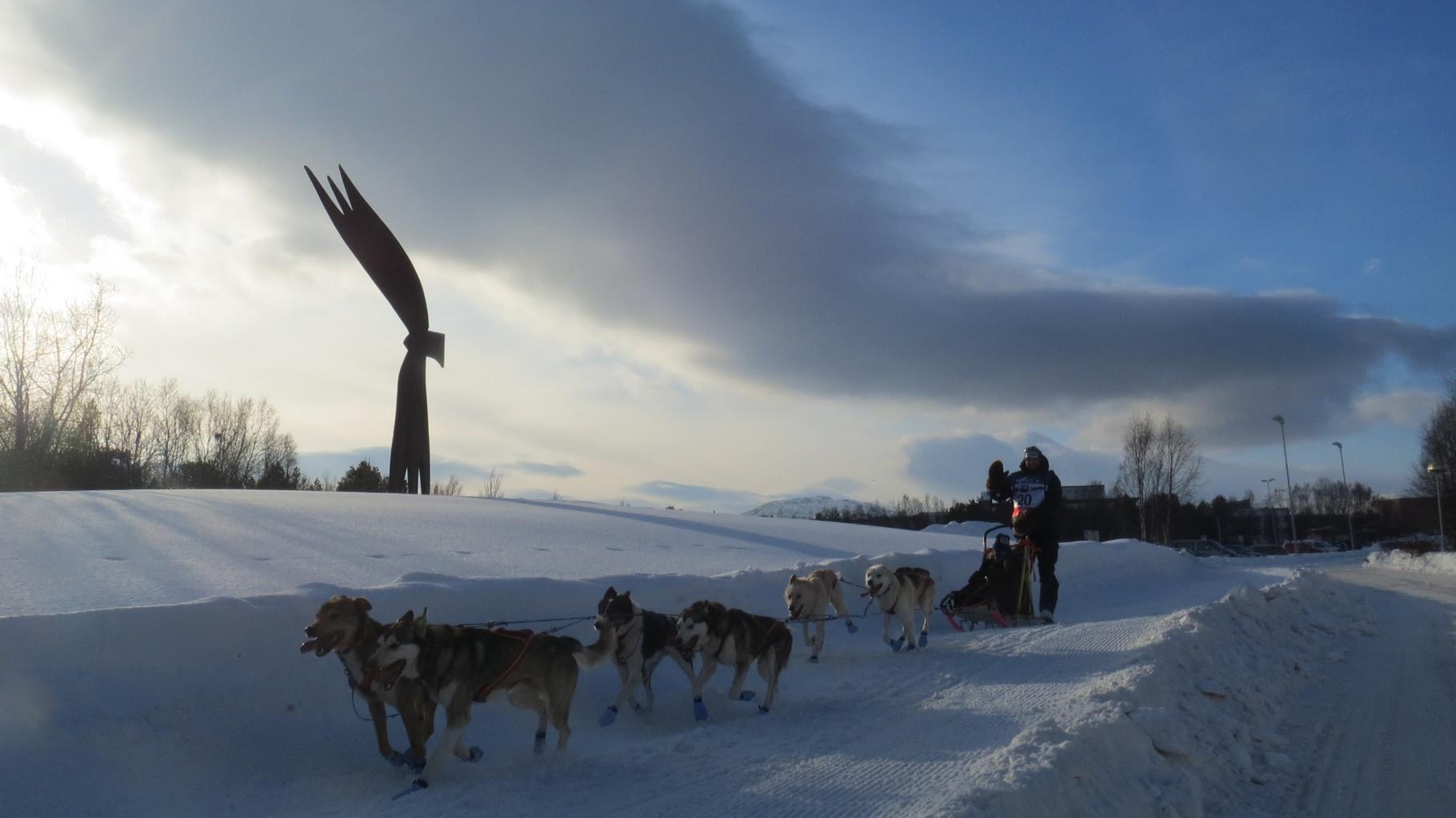 Morgen beginnt der traditionelle Finnmarksløpet ...
