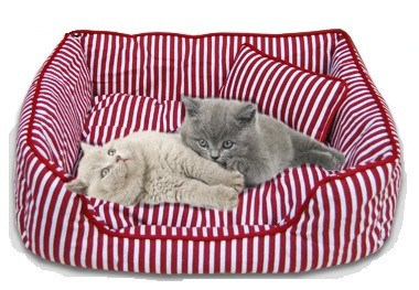 Panier Coussin Chat
