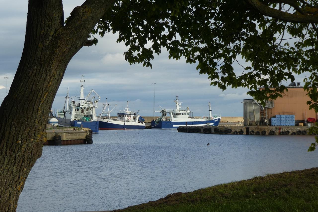 Simrishamn Hafen