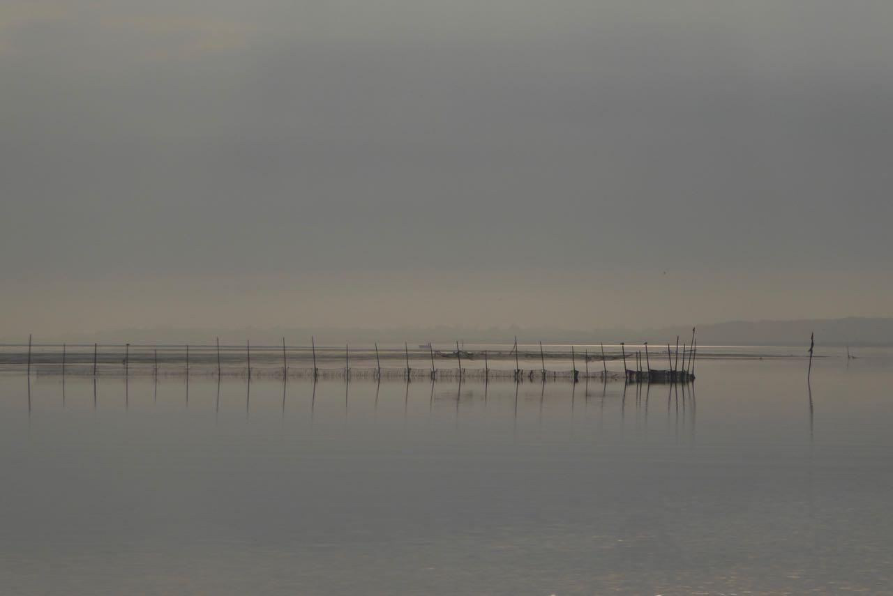 Limfjorden mit Nebel
