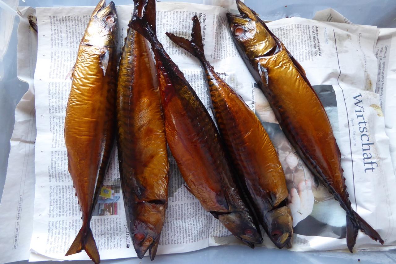 Makrelen von Herrmann