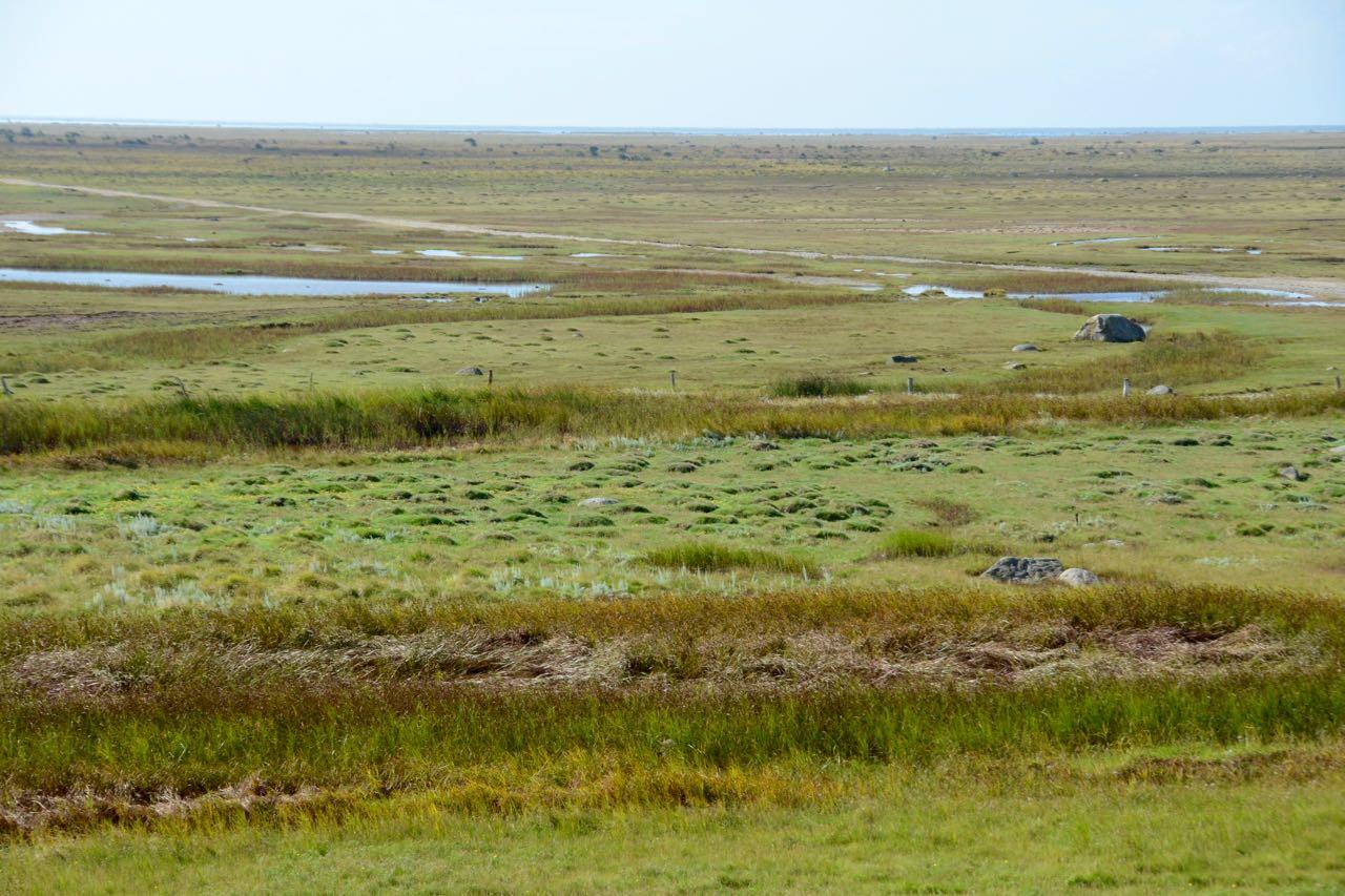 Laesø Flache Landschaft