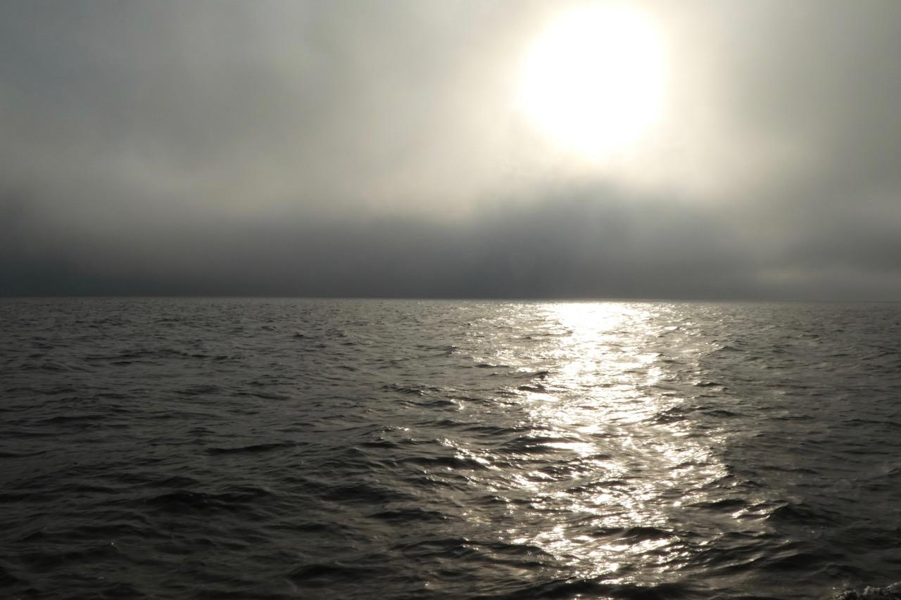 Simrishamn Nebel