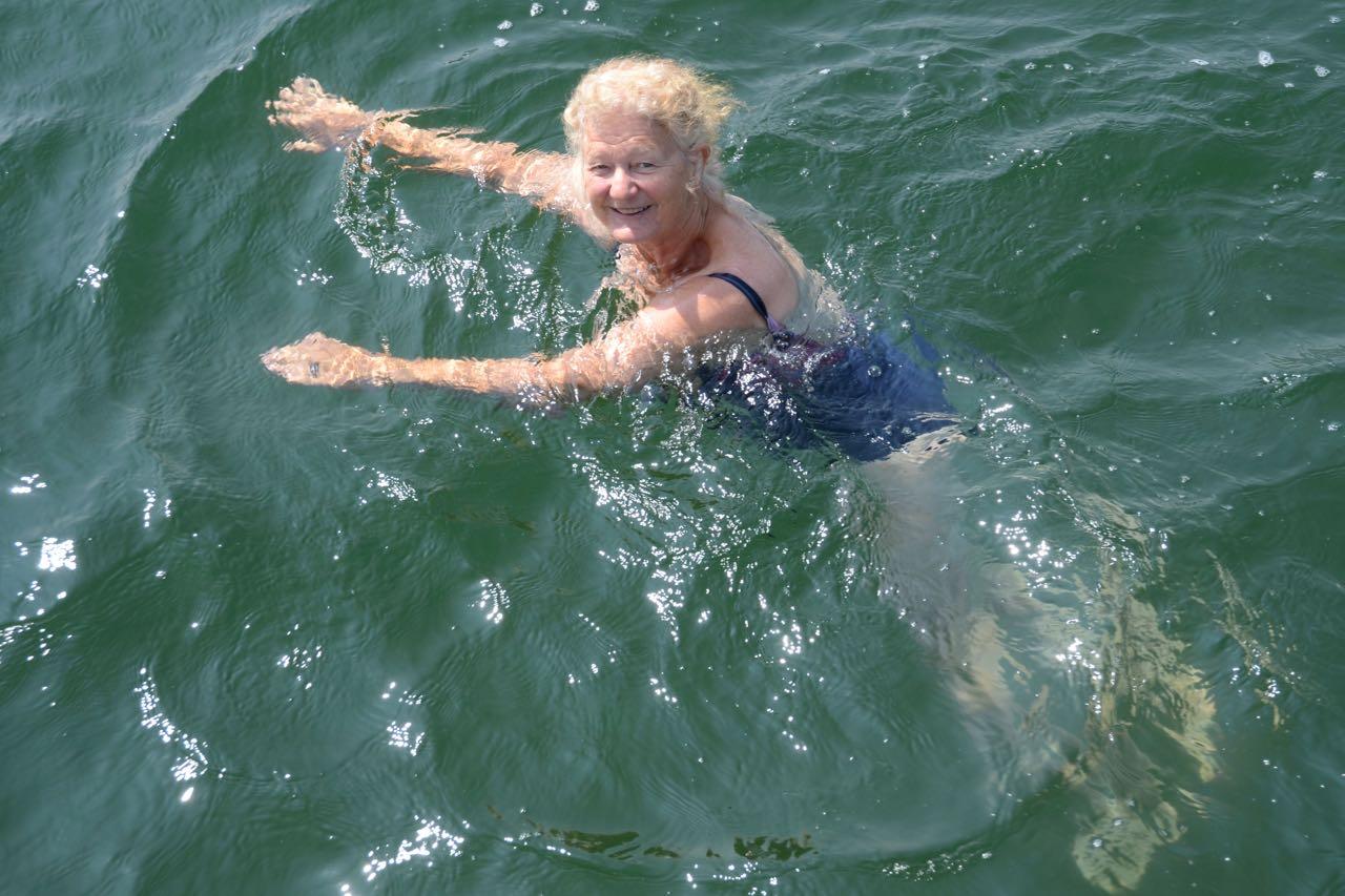 Alssund Vreni beim Schwimmen