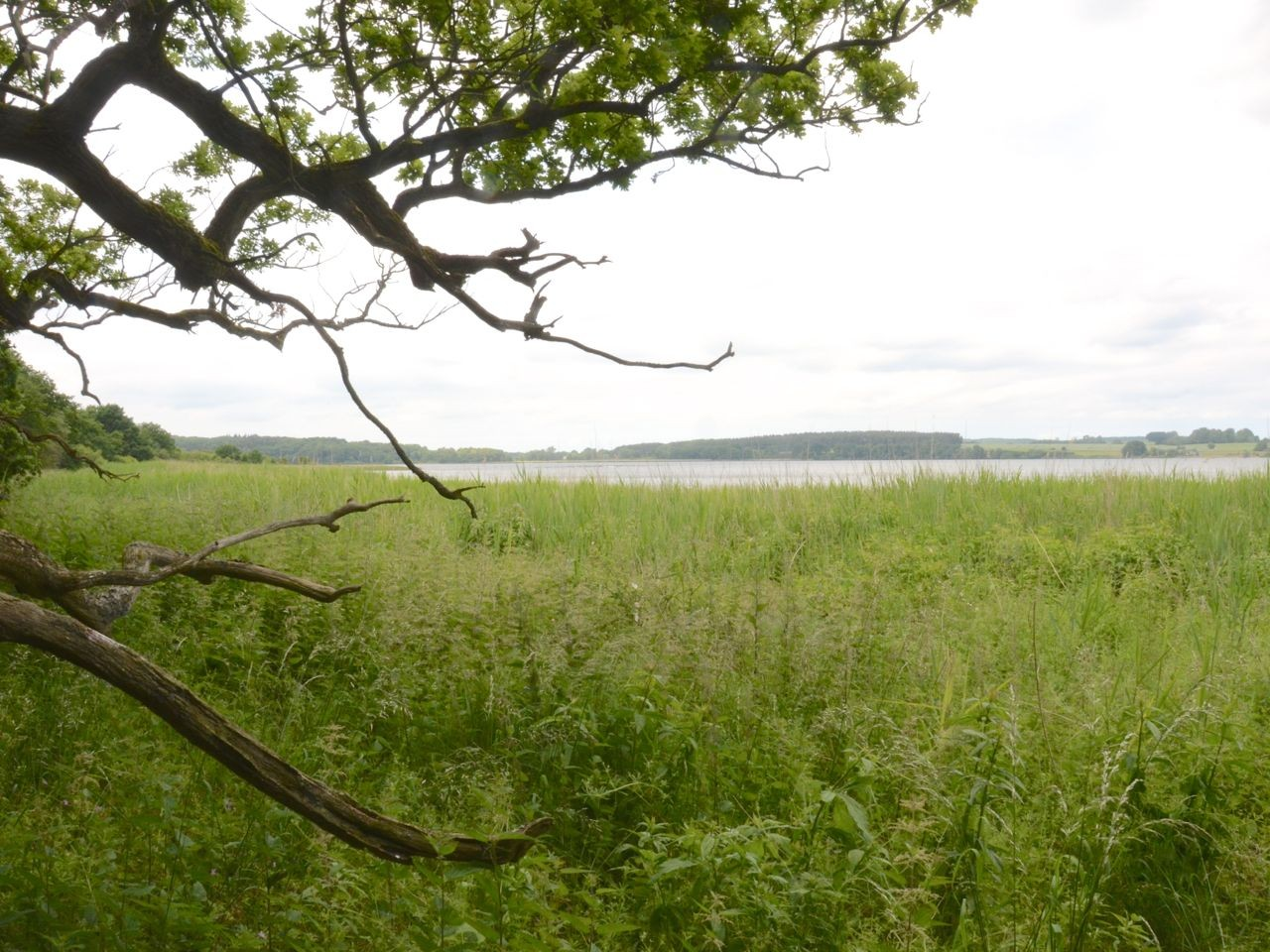Insel Vilm Aussicht