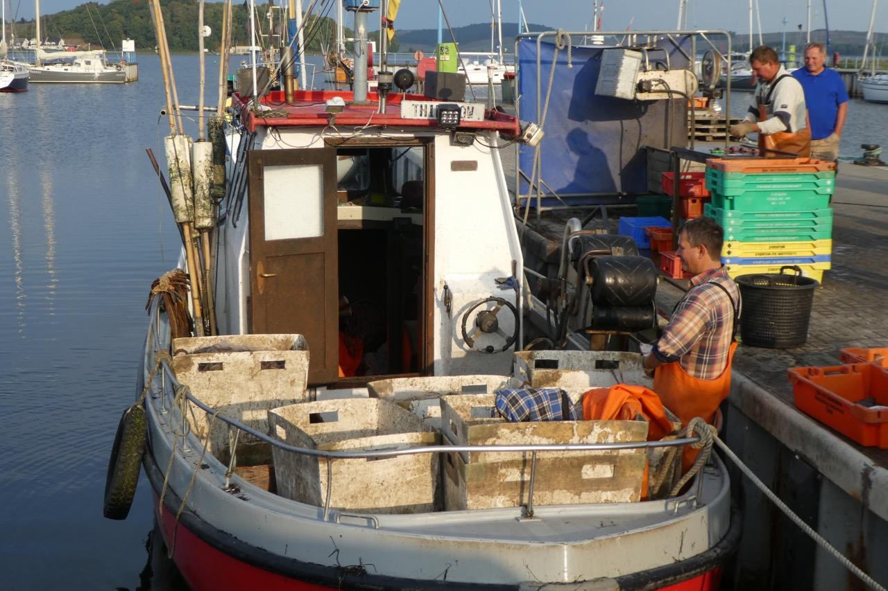 Tiessow Hafen Fischer
