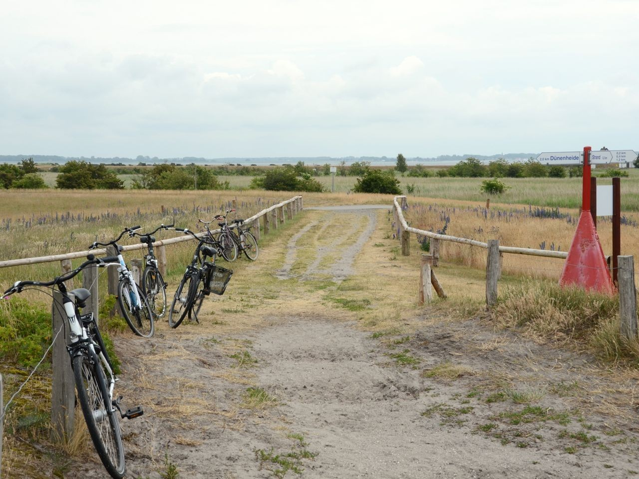 Hiddensee Velotour