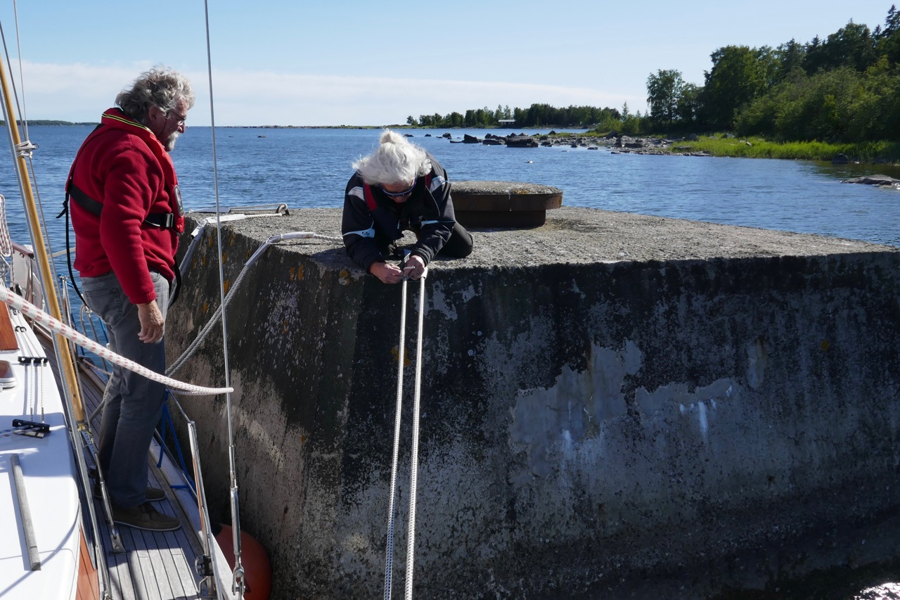 Björkön Dalphin Vreni mit Leinen