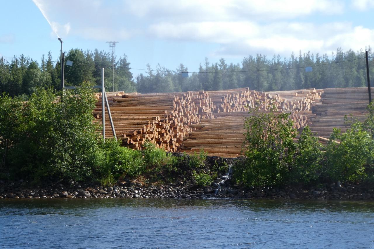 Pitea Holzverwertung