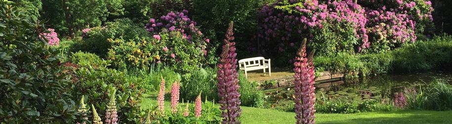 Entspannung im Garten auf Bank