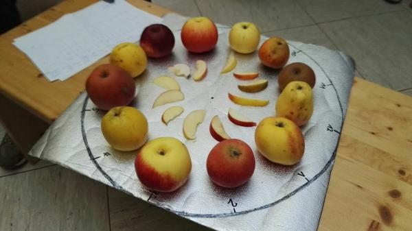 Apfeluhr